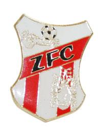 Pin - ZFC Logo
