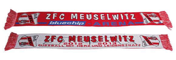 Schal - Regionalliga 2012/13