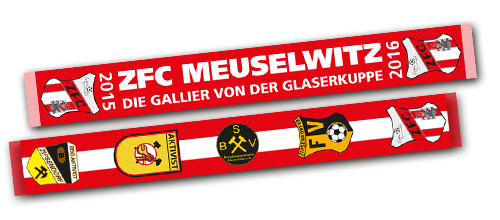 Schal - Regionalliga 2015/16