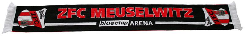 Schal - Regionalliga 2013/14