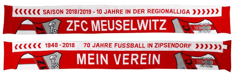 Schal - Regionalliga 2018/19